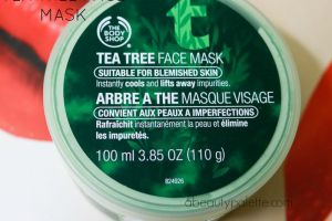 The Body Shop Tea Tree Mask Review, Price