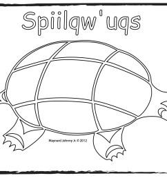 turtle sqiilqwuqs outline [ 1650 x 1275 Pixel ]
