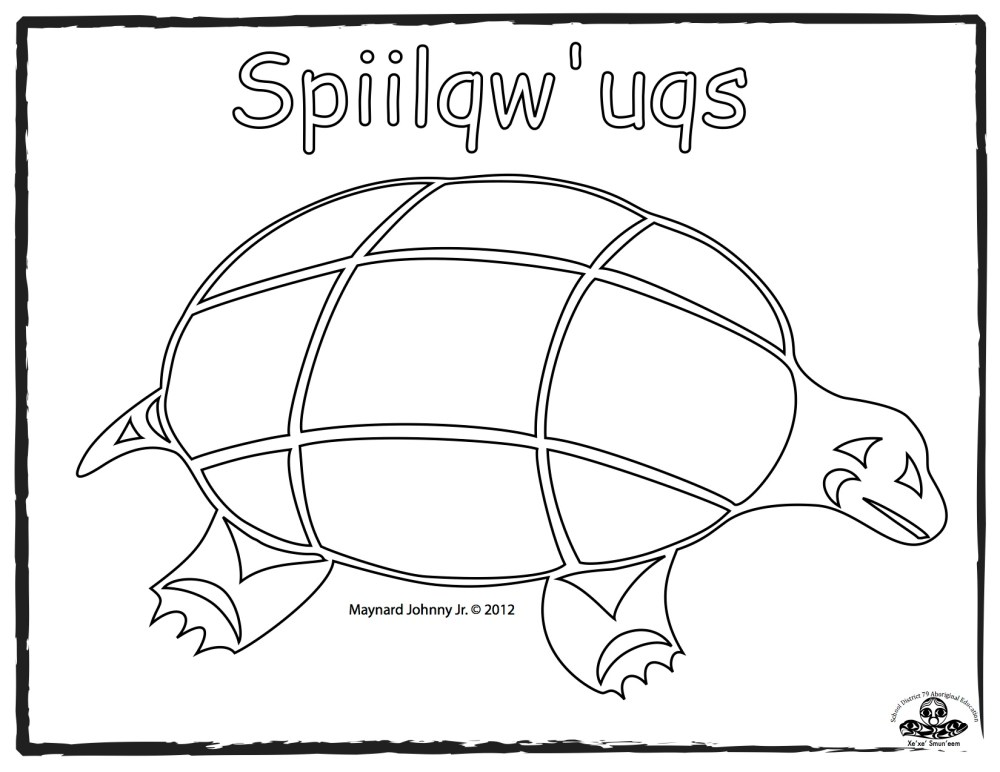 medium resolution of turtle sqiilqwuqs outline