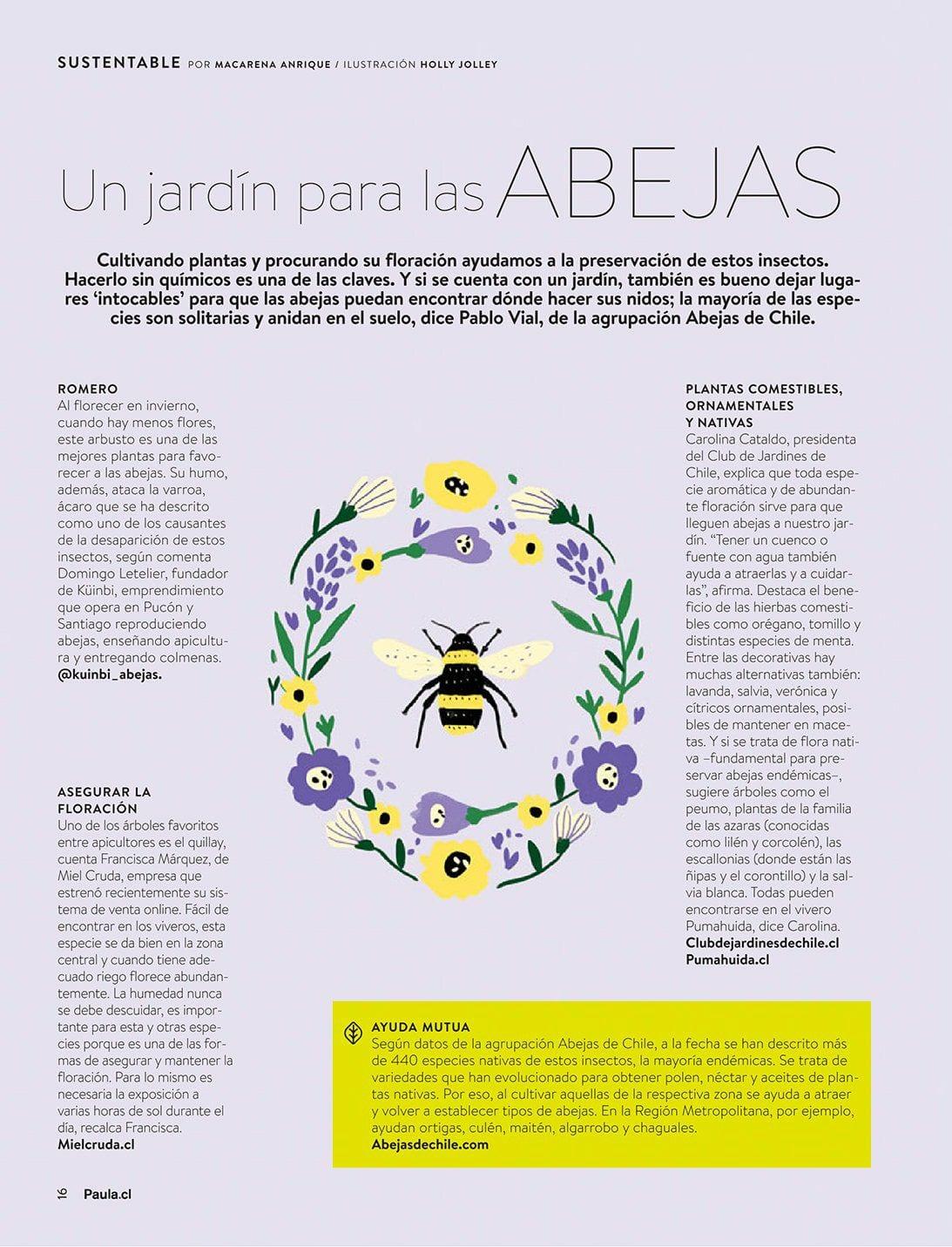 Cómo hacer y qué plantar en un jardín para salvar a las abejas silvestres o nativas