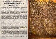 convocatoria primavera_14 Castellano