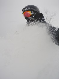 skiingpowinjapan