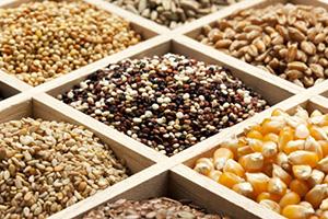 Pentru a dezinfecta semințele, utilizați tratamentul termic (încălzirea), fungicidul se menține într-o soluție de potasiu de mangan (mangartee). Acum, mangartajul a devenit foarte dificil de cumpărat. Farmaciile îl vinde numai prin rețetă. Iar unele farmacii nu au licențe pentru vânzarea de potasiu de mangan - acru, adică Nu în fiecare farmacie puteți cumpăra mangartee.
