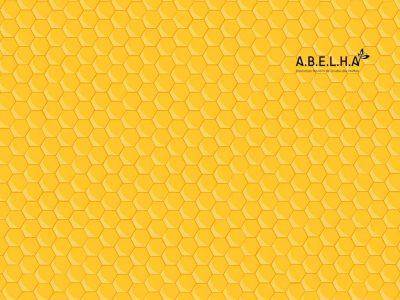 hive-orange-1024x768