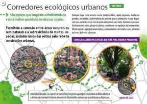 biodiversidade em centros urbanos corredores ecológicos urgabos