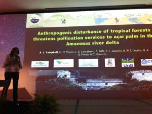 simpósio sobre polinizadore Trends in plant-pollinator interaction in tropics México 2017