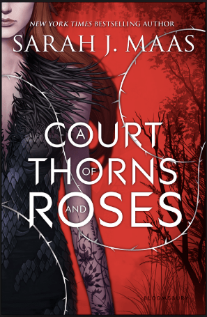 Recommendation: A Court Of Thorns And Roses