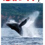 「海」を活用した地域活性化事例 〜神奈川・江ノ島〜 日本一楽しいゴミ拾い