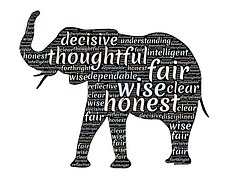 QUALITY ELEPHANT