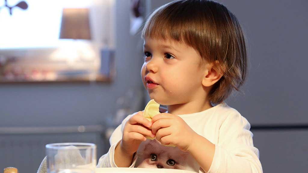 Fertiggerichte sind für Kinder oft überflüssig und ungesund