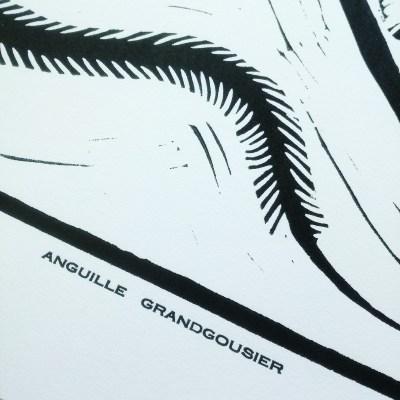 Titre Anguille Grandgousier