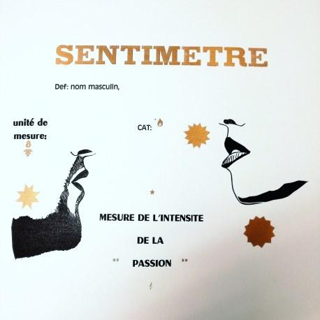 Affiche Sentimètre