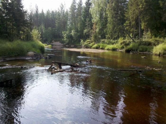 koitajoki.9