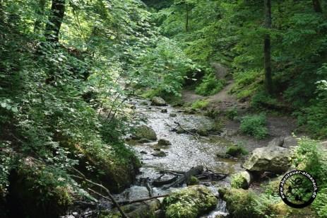 Burgleitenbach