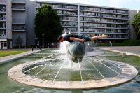 get-wet-plank