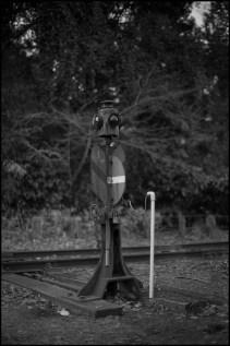 Canon AE-1 FD50mm f1.4 FomaPan400