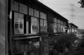 Leica MP NOKTON Classic 35mm f1.4  DELTA400