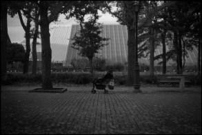 Leica MP Summarit 5cm f1.5  DELTA400