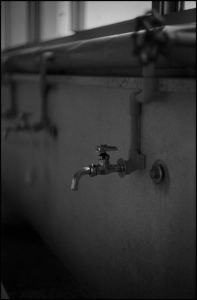 Leica MP  Summarit 5cm f1.5   ILFORD DELTA100