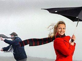 Best Windproof Umbrella 2020 Review