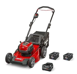 Best Electric Lawn Mower