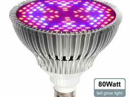 Top 3 Best Plant Growing Lamps 2019Review