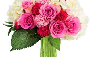Top 10 Best Flowers Delivery for First Date 2020 Review