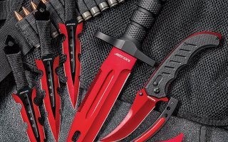 Top 10 Best Throwing Knives in 2020 Review