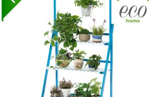Top 10 Best Plant Stand 2018 Review