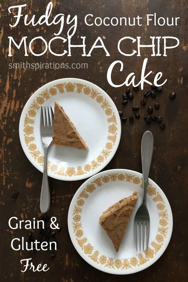 Fudgy Coconut Flour Mocha Chip Cake, Grain and Gluten Free