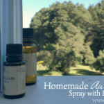 Homemade Air Freshener Spray with Essential Oils