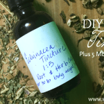 DIY Echinacea Tincture, Plus 5 More Echinacea Recipes