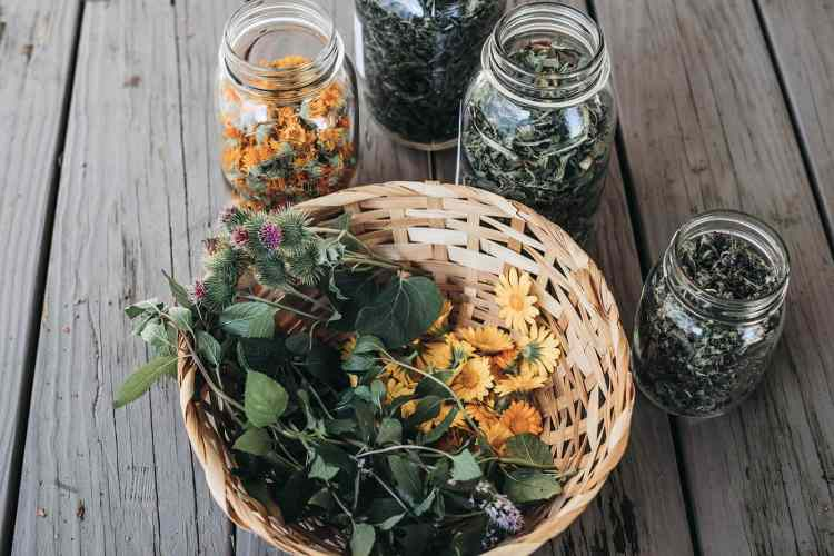 dried herbs in jars and a basket