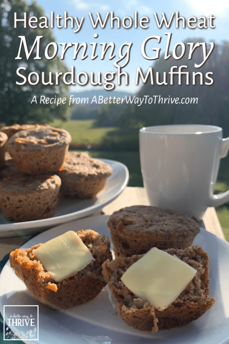 Try these Healthy Whole Wheat Morning Glory Sourdough Muffins for a delicious, convenient, and nourishing breakfast or snack! via @abttrway2thrive