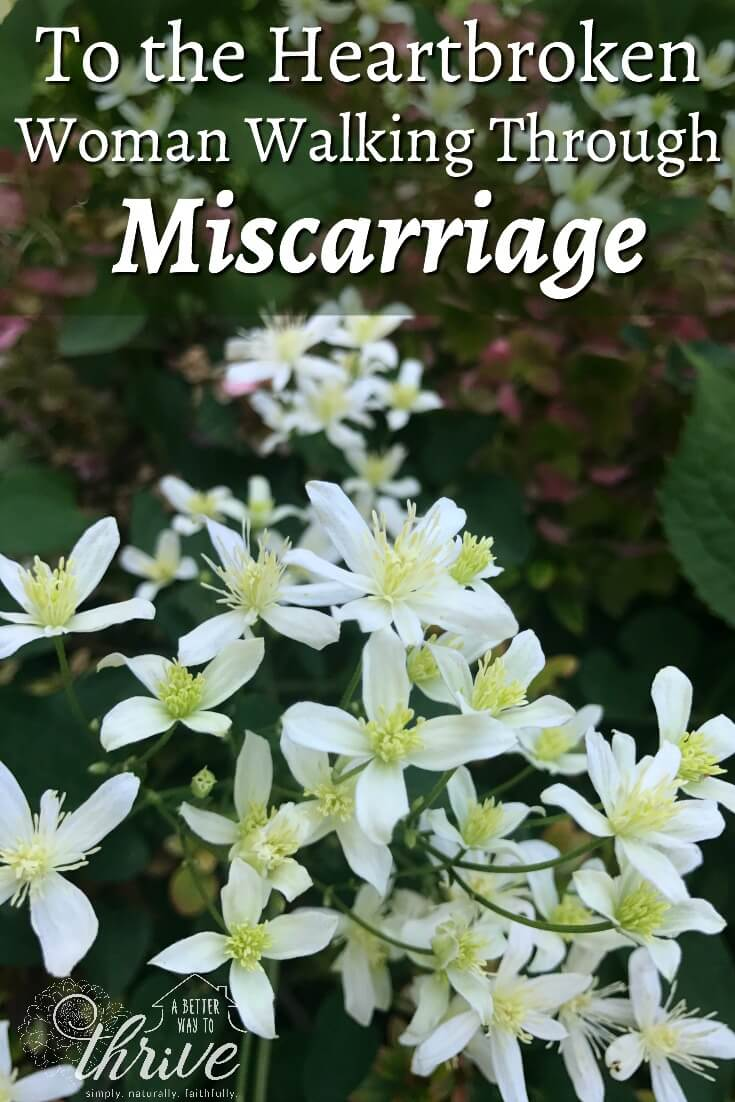 When you've had a miscarriage, the pain and grief are raw. I've been there. I understand. Let me speak to your heart for just a moment and help you heal. via @abttrway2thrive