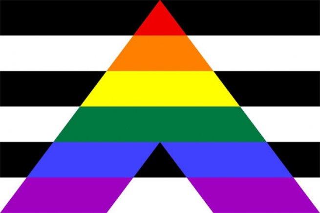 Bandeira de héteros aliados