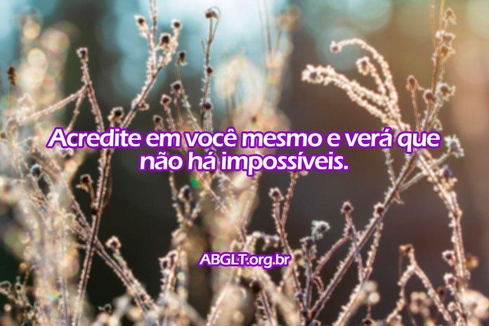 Acredite em você mesmo e verá que não há impossíveis.