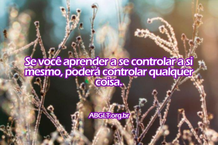 Se você aprender a se controlar a si mesmo, poderá controlar qualquer coisa.