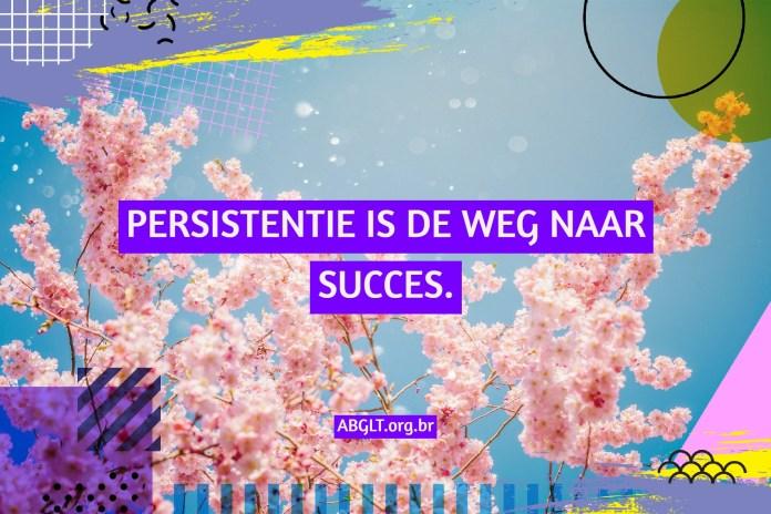 PERSISTENTIE IS DE WEG NAAR SUCCES.