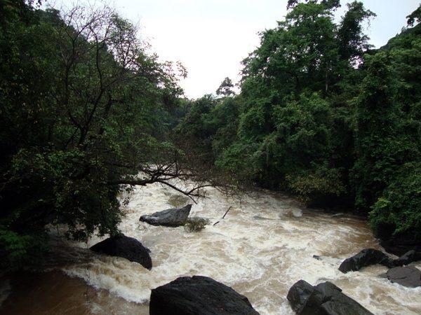 Netravathi River Diversion Project
