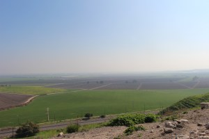Agriculture in Israel3