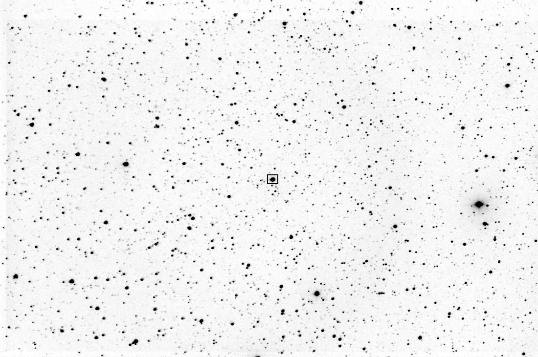 A photometric star field. Small black spots of differing sizes on a white background.