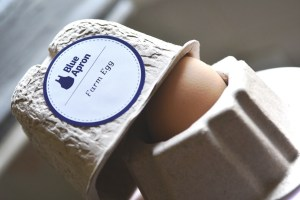 eggs securely packages like this..the cutest