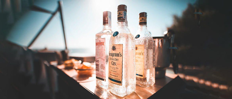 Gin Demistified