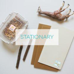 stationarythumb