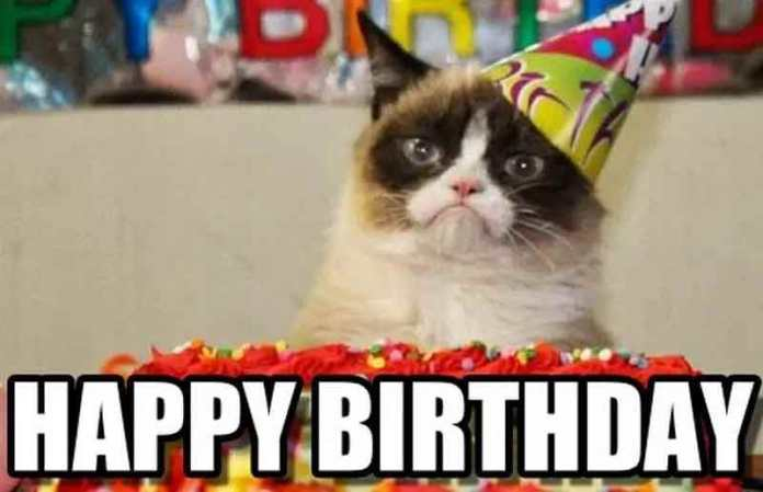 Grumpy Cat Birthday Meme