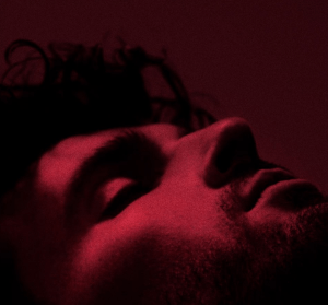 duncan laurence new single