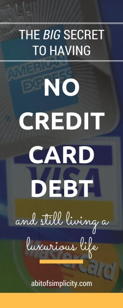 Credit card debt consuming your life? Or worried that you can't make it through without buying with credit? Find out our families big secret to living a luxurious life with NO CREDIT CARD DEBT! www.abitofsimplicity.com