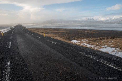 Road TripRoad Trip mit Blick auf den Mýrdalsjökull