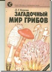 мир грибов